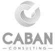 EMANUEL CABAN CONSULTING